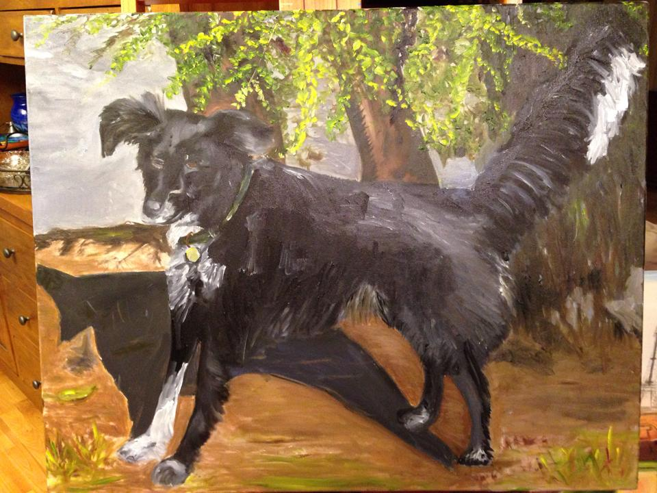 Gallery-Misc-Dog